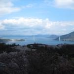 桜の名所(開山)しまなみ海道ライド