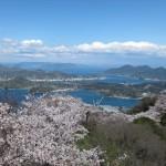 桜の名所(岩城島=積善山)しまなみ海道ライド